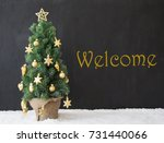 christmas tree  text welcome ... | Shutterstock . vector #731440066