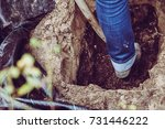 Digging Pet Grave For Cat In...