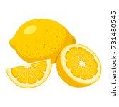 lemon | Shutterstock .eps vector #731480545