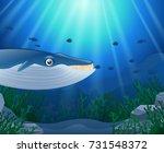 cartoon whale with coral reef... | Shutterstock .eps vector #731548372