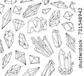 monochrome seamless pattern... | Shutterstock .eps vector #731548942