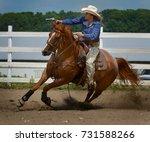 otsego  minnesota usa   05 12... | Shutterstock . vector #731588266