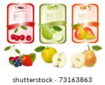 three labels with berries and... | Shutterstock .eps vector #73163863