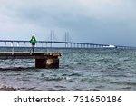 happy woman tourist posing on... | Shutterstock . vector #731650186