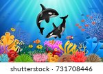 cartoon killer whale with coral ... | Shutterstock .eps vector #731708446