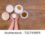 plant alternative milk recipe ... | Shutterstock . vector #731745895