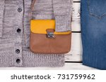 close up on leather bag. set of ... | Shutterstock . vector #731759962