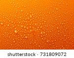 water drops on orange... | Shutterstock . vector #731809072