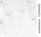 texture  grey grunge style.... | Shutterstock . vector #731904502