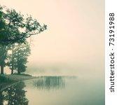Serene Misty Morning On A...