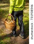 mushroom picker with wicker... | Shutterstock . vector #731938546