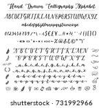 script font alphabet written... | Shutterstock .eps vector #731992966