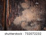 wooden beam in decay  dry rot... | Shutterstock . vector #732072232