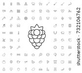 berry icon. set of outline... | Shutterstock .eps vector #732106762