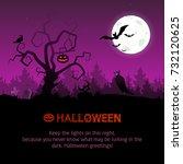 vector illustration on the... | Shutterstock .eps vector #732120625