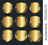 golden shield retro design... | Shutterstock .eps vector #732132172