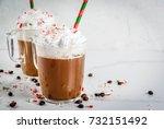 homemade peppermint mocha ... | Shutterstock . vector #732151492