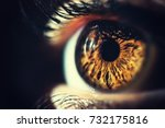 Human Eye Iris Close Up