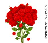 rose bouquet with red flowers... | Shutterstock .eps vector #732190672