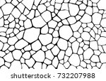 desert ground. abstract... | Shutterstock .eps vector #732207988