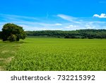 english countryside | Shutterstock . vector #732215392