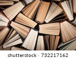 book. | Shutterstock . vector #732217162