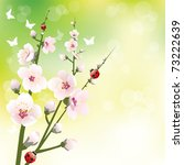 spring blossoming background | Shutterstock .eps vector #73222639
