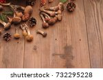 mushrooms on a brown wooden... | Shutterstock . vector #732295228