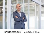 happy mature businessman in... | Shutterstock . vector #732336412