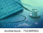 medical web site and online... | Shutterstock . vector #732389002