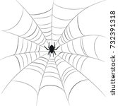 spider and web vector ... | Shutterstock .eps vector #732391318