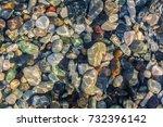 sea stones in the sea water.... | Shutterstock . vector #732396142