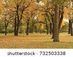 autumn   Shutterstock . vector #732503338