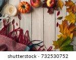 vintage autumn border from... | Shutterstock . vector #732530752