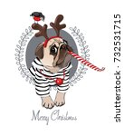 christmas card. pug dog in a... | Shutterstock .eps vector #732531715