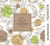background with coconut. vector ...   Shutterstock .eps vector #732542578