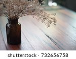 dried gypsophila flowers in... | Shutterstock . vector #732656758