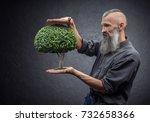 bearded man holding a tree | Shutterstock . vector #732658366