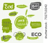 healthy food icons  labels.... | Shutterstock .eps vector #732713242