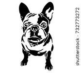 vector flat illustration of... | Shutterstock .eps vector #732773272