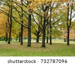 autumn park with trees and... | Shutterstock . vector #732787096