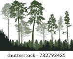 illustration with pine forest... | Shutterstock .eps vector #732793435
