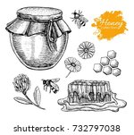 honey set. vintage hand drawn... | Shutterstock . vector #732797038