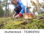 Close Up Of An Edible Mushroom...
