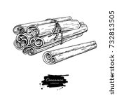 cinnamon stick tied bunch... | Shutterstock .eps vector #732813505