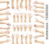 multiple woman's hand gestures... | Shutterstock . vector #732833362