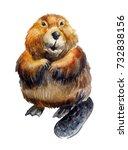 Cute Realistic Beaver On A...