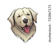 labrador dog illustration | Shutterstock . vector #732867172