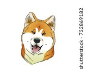 akita dog illustration | Shutterstock . vector #732869182
