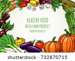vegetables illustration... | Shutterstock .eps vector #732870715
